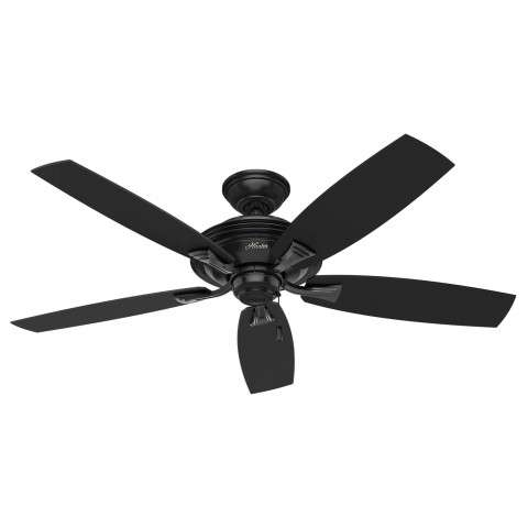 Hunter Rainsford Ceiling Fan Model 53348