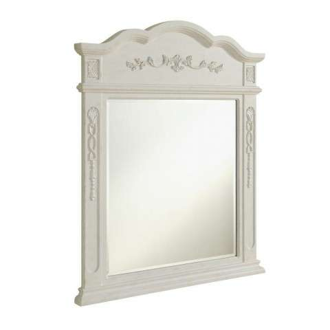 Danville 32 in. Traditional Mirror in Antique White